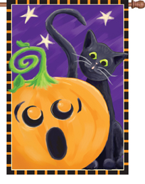 Halloween Surprise House Flag