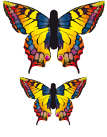 Butterfly Kite - Swallow Tail L