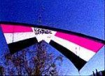 Revolution EXP Pink Stunt Kite