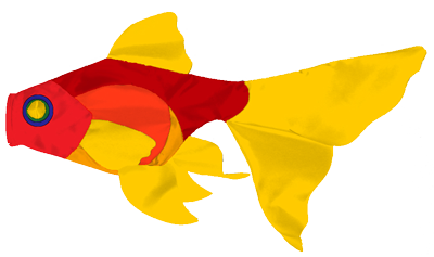 Fantail Goldfish A
