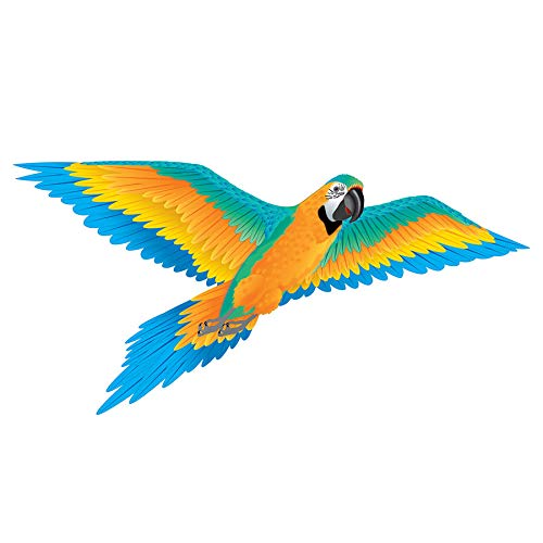 3-D Macaw