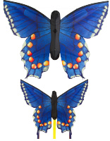 Butterfly Kite - Swallow tail Blue L