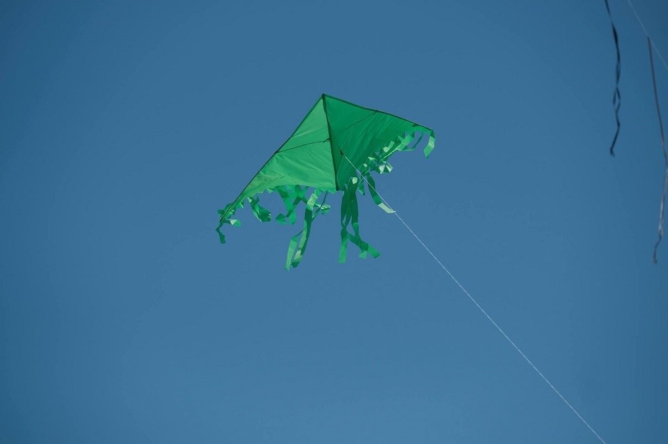 Fringe Tail Delta Green Kite