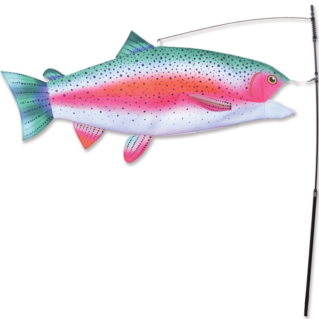 Rainbow Trout Swimming Fish
